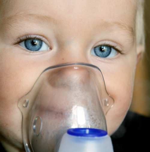 Summer school of paediatric respiratory medicine - Preview Image