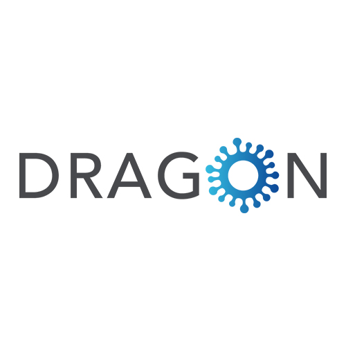 COVID-19: State of the art – DRAGON IMI project - preview image